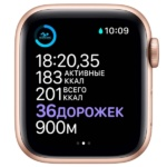 Apple Watch S6 44mm Gold Aluminum 4